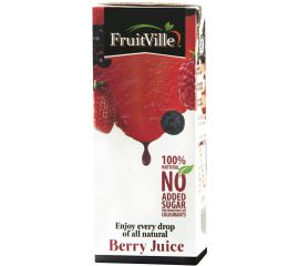 Fruitville Mixed Berry Juice Tetra - Bulkbox Wholesale