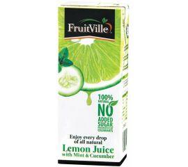 Fruitville Lemon Mint & Cucumber Juice Tetra - Bulkbox Wholesale