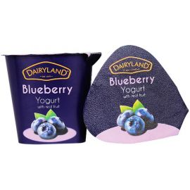 Dairyland Blueberry Yoghurt 12x150g - Bulkbox Wholesale
