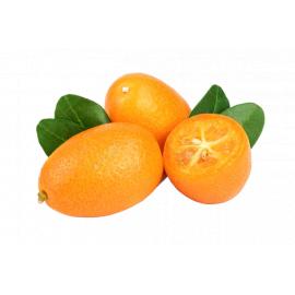 Kumquats - Bulkbox Wholesale