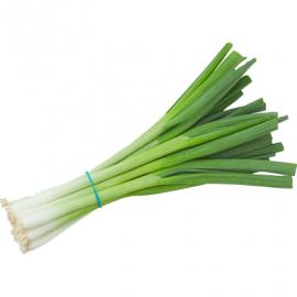 Green Onions Packed/Pcs - Bulkbox Wholesale