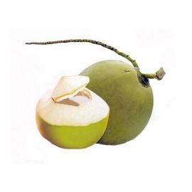 Coconut Fresh/Pcs - Bulkbox Wholesale
