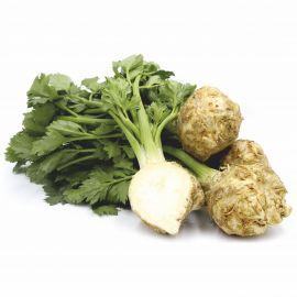 Celery Root/Kg - Bulkbox Wholesale