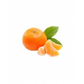 Tangerines Imported/Kg - Bulkbox Wholesale