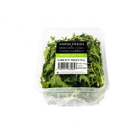 Farm Fresh Green Mizuna 100g - Bulkbox Wholesale