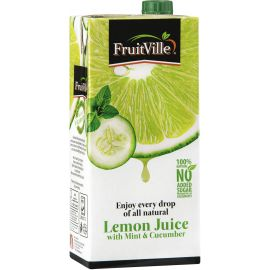 Fruitville Lemon Mint & Cucumber Juice Tetra - Bulkbox Wholesale