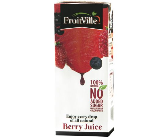 Fruitville Mixed Berry Juice Tetra - Bulkbox Wholesale