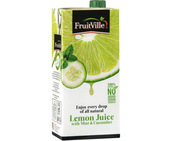 Fruitville Lemon Mint, Cucumber Tetra Juice - Bulkbox Wholesale